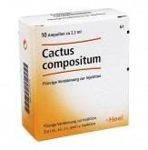 Heel Cactus Compositum I Amp 10x2,2ml