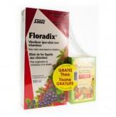 Salus Floradix + Thee Multivitamine Gratis 500 ml