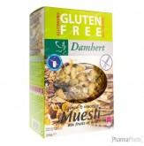 Damhert Fruits/Noix Muesli Sans Gluten 250 g